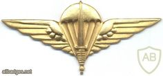 BELGIUM Para-Commando Parachutist beret badge, gold