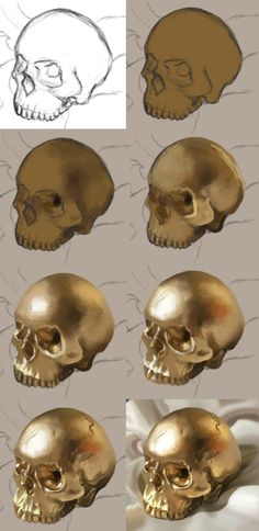 New Ideas Drawing Skull Tutorial Art Digital Painting Tutorials, Digital Art Tutorial, Art Tutorials, Digital Paintings, Painting Process, Process Art, Painting & Drawing, Gold Drawing, Drawing Tips