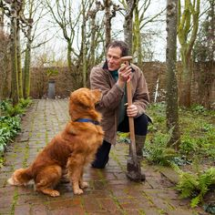 """Monty Don said dogs can help with depression, crediting his golden retriever Nigel with getting him outside again after he suffered from """"black periods"""". Monty Don Longmeadow, Garden Mirrors, Man And Dog, Service Dogs, Great Friends, Labrador Retriever, Retriever Puppies, Beautiful Dogs, Dog Life"""