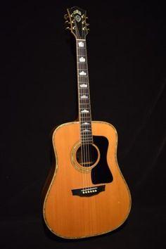 Guitars Gibson, Fender, Guild, Martin, Vintage - Gbase for musicians Guitar Amp, Cool Guitar, Guild Acoustic Guitars, Zakk Wylde, Guitar Collection, Gears, Music Instruments, Belgian Beer, Lyrics
