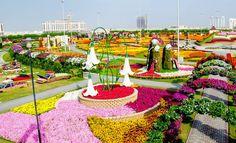 el jardín más grande de todo el planeta se llama Milagro, ya que está en medio del desierto en Dubái