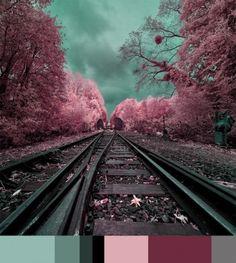 Colors & Tech. Fotografia a infrarossi