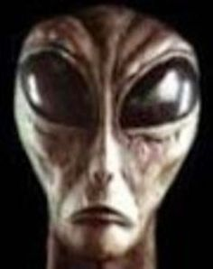 SPECIES: PIN7 CLASS: Changeling ORIGIN: UNKNOWN Intention not to be HOSTILE OBJECTIVE: EXPLORER BASES OF THE EARTH: X-FILES OBSERVATION: USA 2000........SOURCE FREEONDAREVOLUTION.BLOGSPOT.FR..........POSTED BY KROMMINO 75........