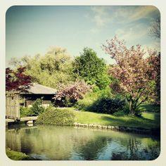 Japanisches Teehaus, Englischer Garten in # Munich #Germany