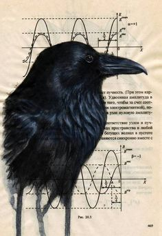 """""""Raven"""" by Suvi-Kukka Tuominen, Imatra // Raven painted on a page from Russian physics book. // Imagekind.com -- Buy stunning, museum-quality fine art prints, framed prints, and canvas prints directly from independent working artists and photographers."""