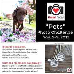 Silver Hand-Stamped Camera Necklace Giveaway November Photo Challenge  #iheartfaces #photography
