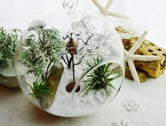 Wintery Narnia Terrarium with Snow White by BeachCottageBoutique