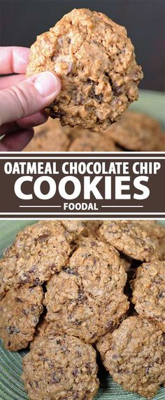 Looking for mouthwatering oatmeal chocolate chip cookies? Try this old fashioned recipe that includes optional walnuts and raisins. Crunchy, sweet, golden. Get the recipe now on Foodal.