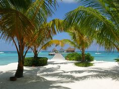 Maldives is a great place for tranquil tropical islands, palm trees, white beaches and brilliant turquoise lagoons.