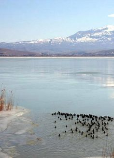 Lake Prespa, Florina, Greece Republic Of Macedonia, Paradise On Earth, Greek Life, Albania, Fresh Water, Sailing, Beautiful Places, National Parks, Heaven