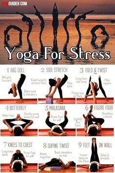 A little yoga in the morning, at night, or even on a lunch break, can minimise stress and increase productivity. It is believed that yoga is so effective for stress relief because, aside from the. Yoga Am Morgen, Gym Workout Tips, Workouts, Yoga For Stress Relief, Yoga Posen, Yoga Poses For Beginners, Yoga Routine, Yoga Benefits, Yoga Sequences
