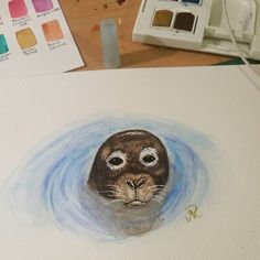 Check out my new video of me painting this cute watercolour seal over at http://ift.tt/274Y8sd    #art #painting #watercolour #watercolours #watercolorpaintings #winsorandnewton #iloveart #artlovers #watercolor #watercolorpainting #watercolors #seal #seals #artists #artstudio #paintings #artistscommunity #artist #75artstreet