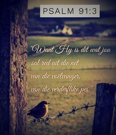 Psalm 91, Afrikaans, Bible, God, Quotes, Biblia, Dios, Qoutes, Quotations