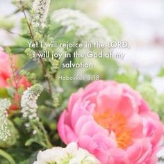 HABAKUK  3:18  - Yet I will rejoice in the Lord, I will joy in the God of my salvation.   KJV