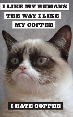 Grumpy Cat: A Grumpy Book  - I like humans the way i like my coffee