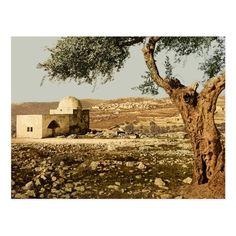Jewish Temple, Into The West, Western Wall, Bethlehem, Judaism, United Nations, Abandoned Houses, Jerusalem, Postcard Size