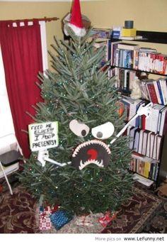 The Next Loetscher Family Christmas tree