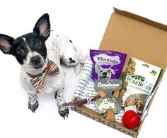 Use code HENRYTHENUGGET to get a free box added to whichever plan you choose! (Even one month - that's only $15 a month for a box worth $40-50!)