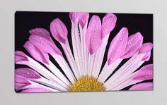 quadro moderno fiore stampa tela