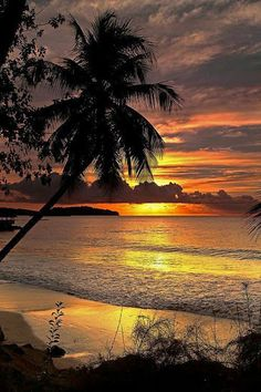 A Beautiful Tropical Sunset into the Ocean