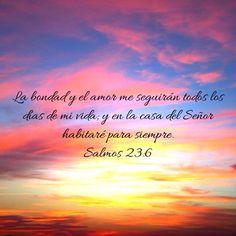 """""""La bondad y el amor me seguirán todos los días de mi vida; y en la casa del Señor habitaré para siempre."""" Salmos 23:6 NVI"""