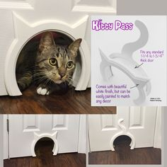 The Kitty Pass Interior Cat Door, Pet Door Hidden. Don't let your kitties....