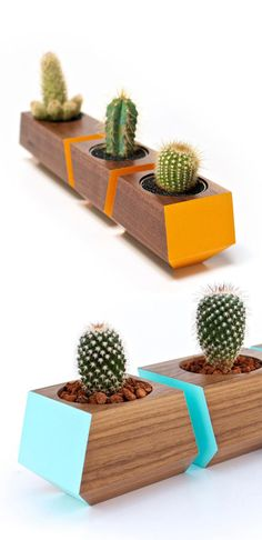 Your E-Organization - Employ An Accountant Or Do It Yourself Cactos Wood Crafts, Diy And Crafts, Wood Projects, Projects To Try, Decoration Plante, Cactus Y Suculentas, Cacti And Succulents, Wood Art, Indoor Plants