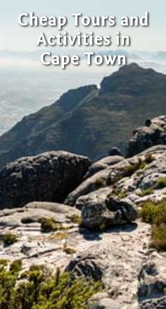 Cheap Tours and Activities in Cape Town