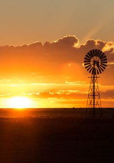 Outback Queensland is a fantastic destination for a family road trip. Check out these insider tips from another family!