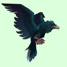 Raven (Bird of Prey)/Raven (Carrion Bird)