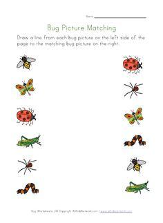 bug worksheets for several different skills