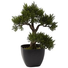 Plastic 15-inch Cedar Bonsai Artificial/Decorative Plant ** You can find out more details at the link of the image.