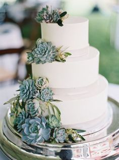 Wedding cake topped with succulents: Photography: Kristin Sweeting - http://www.kristinsweeting.com/