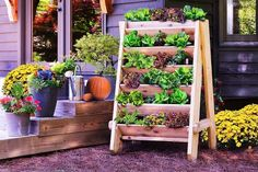 Herb Wall Planter is an easy project that will be completed in a few hours. You can grow herbs even in limited space!This Herb Wall Planter is an easy project that will be completed in a few hours. You can grow herbs even in limited space! Plantador Vertical, Jardim Vertical Diy, Vertical Garden Design, Vertical Planter, Herb Planters, Vegetable Garden Design, Vertical Gardens, Small Gardens, Pallet Planters
