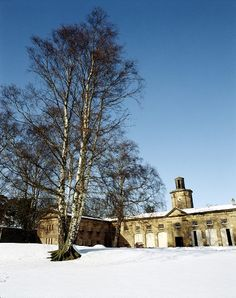 Belsay Hall, Castle & Gardens in Northumberland via English Heritage.  Belsay stables in the snow