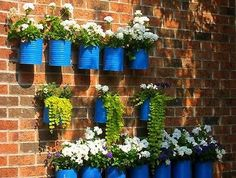 Can Planters: All you need to do is to paint these cans with some bright color to get started.