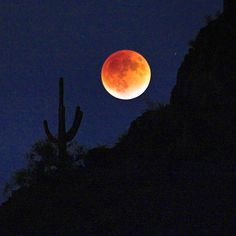You don't have to travel far from civilization to find captivating night skies. In this picture, an eclipsed supermoon rises over Saguaro National Park near Tucson, Arizona. Supermoons occur when a full moon's orbit is closest to Earth, making it appear larger and brighter in the night sky. Taken last September, this photo shows a supermoon during a lunar eclipse, which colors the moon red -- the next eclipsed supermoon won't happen until 2033. Photo by Jack Suman…