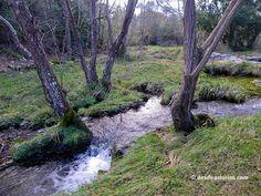 Senda del Rio Guadamía en Asturias