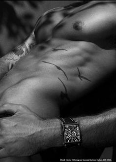 love the bird tattoos on his abs