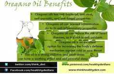 4 Health Benefits Linked To Oregano Oil Oregano Oil Benefits, Steam Distillation, Health And Beauty Tips, Home Remedies, Health Benefits, Essential Oils, How To Apply, Herbs, Essentials