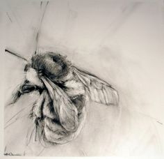 by April Coppini, an ex of lighter in the dark charcoal department