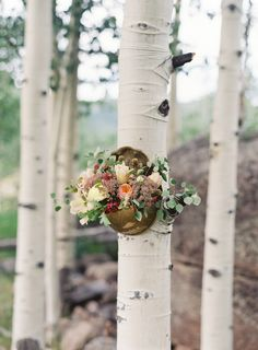 Autumnal floral arrangement affixed to an aspen tree | Photo by Bryce Covey