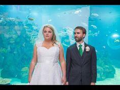 Maggie & Tyler Toledo Zoo Wedding Photos by Mary Wyar Photography marywyarphotography.com