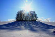 Biei, Hokkaido, Japan by 写楽庵 on PHOTOHITO