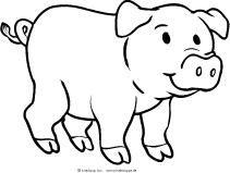Schweinchen - lernen und spielen | Kindersuppe