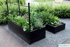 Garden boxes in gravel. Garden boxes in gravel. Diy Garden, Vegetable Garden Design, Plants, Garden, Urban Garden, Outdoor Gardens, Garden Boxes, Garden Landscaping, Backyard