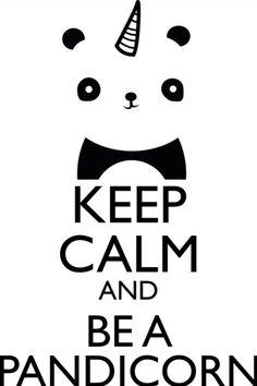 Funny Panda Unicorn Quotes Keep Calm and Be A Pandicorn Cushion Case - Decorative Square Throw Cushion Pillow Case Pillow Shell Pillowcase - inches, One-sided Print Keep Calm Posters, Keep Calm Quotes, Affiches Keep Calm, Unicorn Quotes, Unicorn Puns, Funny Unicorn, Unicorns And Mermaids, Cute Panda, Panda Panda