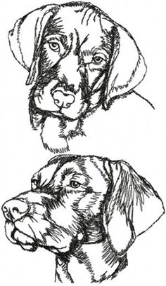 Set of 2 Machine Embroidery Designs Chain Stitch Embroidery, Embroidery Stitches, Embroidery Patterns, Advanced Embroidery, Learn Embroidery, Stitch Head, Pencil Drawings Of Animals, Hungarian Embroidery, Animal Coloring Pages