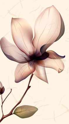 Flower Abstract wallpaper by LadyVanja - - Free on ZEDGE™ Flower Background Wallpaper, Flower Phone Wallpaper, Locked Wallpaper, Pastel Wallpaper, Flower Backgrounds, Wallpaper Backgrounds, Iphone Wallpaper, Screen Wallpaper, Wallpaper Pictures