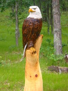 Chainsaw Sculptures For Sale | Parsons Woodsculpture: Unique Chainsaw Carvings for Sale